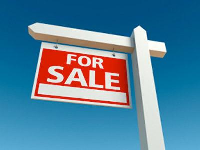 Pre Sale Inspection